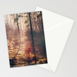 Little Red Tree Stationery Cards