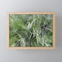 Plethora Of Palm Fronds Abstract Photography Framed Mini Art Print