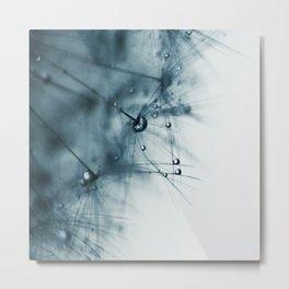 dandelion blue VIII Metal Print