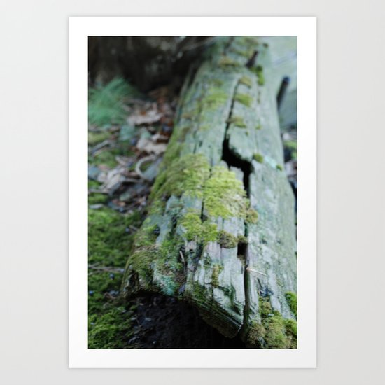 Old tree log with moss Art Print