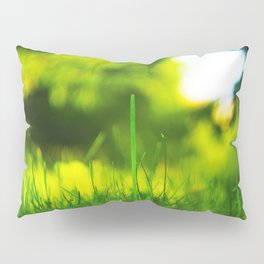 Blades Of Grass Macro Closeup Pillow Sham