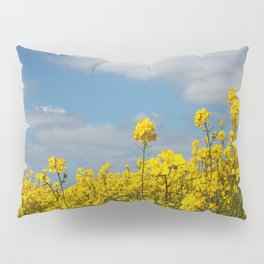 Rape yellow flowers Pillow Sham