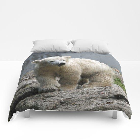Polarbear_2015_0302 Comforters