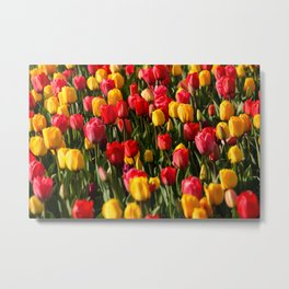 Peace, Love And Tulips Metal Print