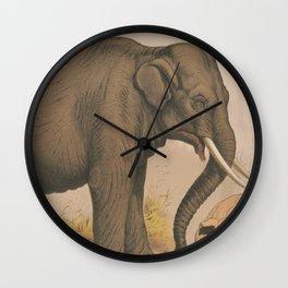 Vintage Elephant Illustration (1874) Wall Clock