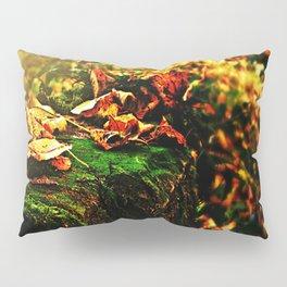 Richness of Autumn.  Pillow Sham