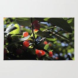 Jane's Garden - Sunkissed Red Berries Rug