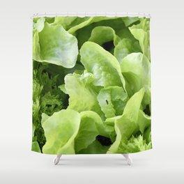 Lettuce 1 Shower Curtain