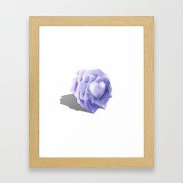 Rose 02 Framed Art Print