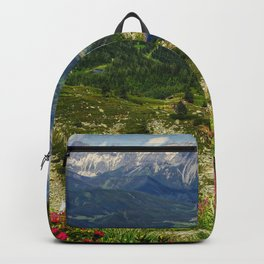 Gasselsee Backpack