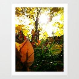 Fall at Notre Dame Art Print