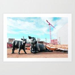 denver cattle Art Print