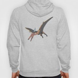 Pteranostorm - Superhero Dinosaurs Series Hoody