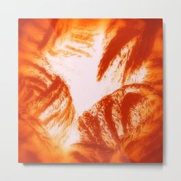 Red Hot & Woolly Metal Print