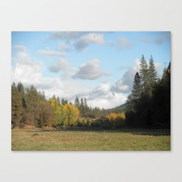 Calaveras County RRF, CA 2011 Canvas Print
