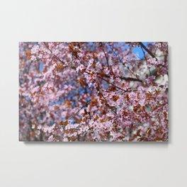 """""""Pink spring"""". Flowers. Metal Print"""