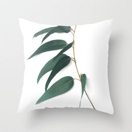 Eucalyptus /1/ Throw Pillow