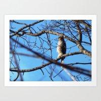 hawk Art Prints featuring Hawk by ACamp