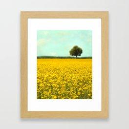 Yellow Fields Framed Art Print