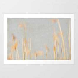reed abstract 3 Art Print