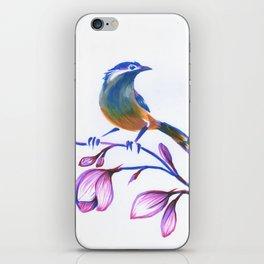 bluebird on magnolia iPhone Skin