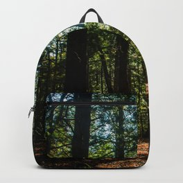 Grafton Trail Backpack