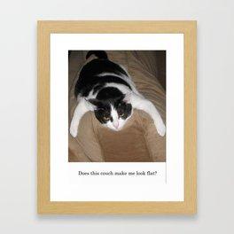 Fat Cat looks Flat Framed Art Print
