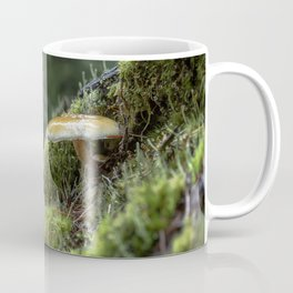 Little Things in a Big Forest Coffee Mug