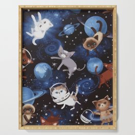 Cat Space Serving Tray