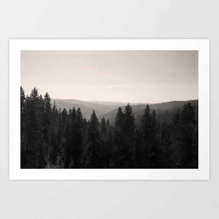 Sepia Tree Lined Valley Photography Print Kunstdrucke