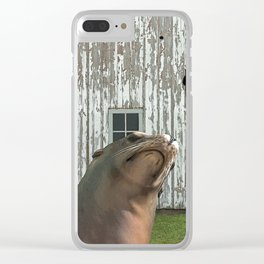 Photobomb at the Barn Clear iPhone Case
