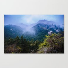 Japanese forest 2 Canvas Print