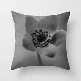 Anemone coronaria Throw Pillow