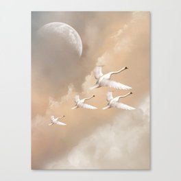 Flying Swans Canvas Print