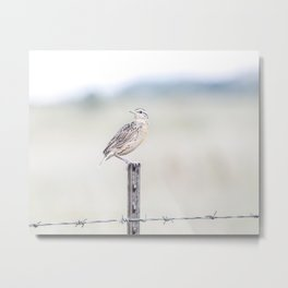 """Bobolink Bird & Ranch Fence"" by Murray Bolesta Metal Print"