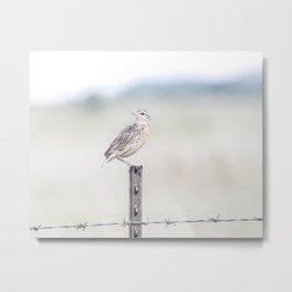 """Bobolink Bird & Ranch Fence"" by Murray Bolesta Metal Print"
