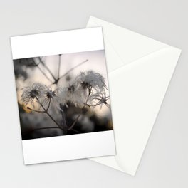Old mans beard Stationery Cards