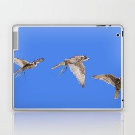 Falconry Composite, Bird of Prey Laptop & iPad Skin