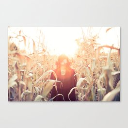 Fall Corn Sunset Canvas Print