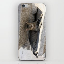 Guardian Of The Ruins iPhone Skin