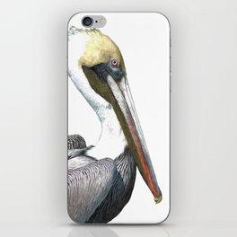 Pelican Portrait iPhone Skin