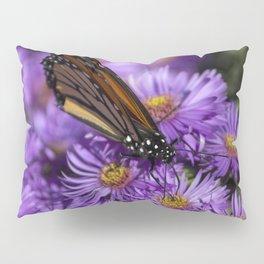 Monarch Butterfly 4 Pillow Sham
