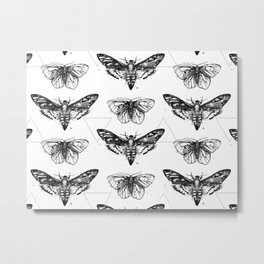 Geometric Moths Metal Print