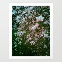 monet Art Prints featuring Monet Magnolia by karrenn