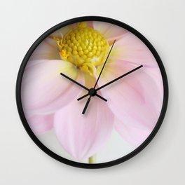 Powder Pink Dahlia Wall Clock