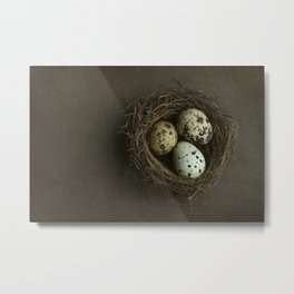 Quails Eggs and Nest Metal Print