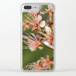 Blooming tree Clear iPhone Case
