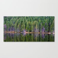 forest above and below Canvas Print