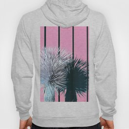 Yucca Plant in Front of Striped Pink Wall Hoody