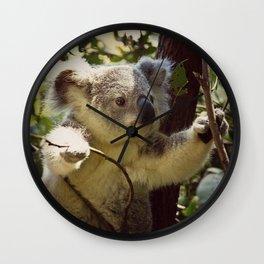 Sweet Koala Baby Wall Clock